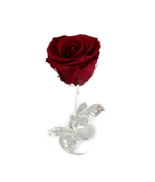 Bomboniera Rosa Stabilizzata Rossa 16 2 - NonSoloCerimonie.it