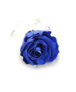 Rosa Stabilizzata Blu - NonSoloCerimonie.it
