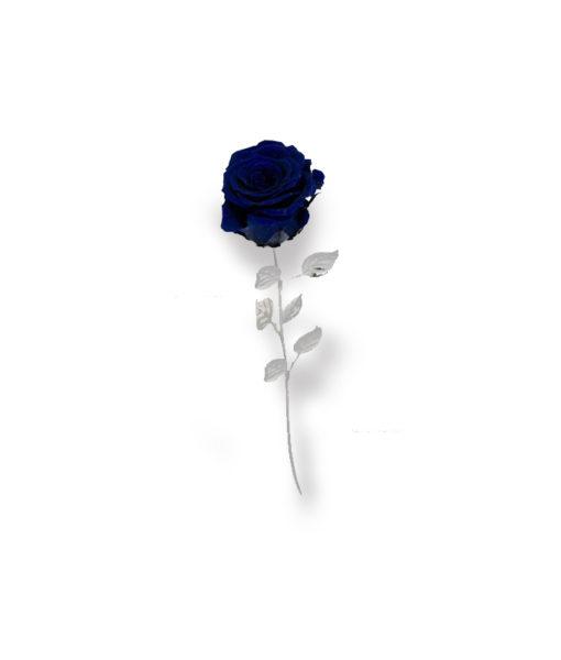 Rosa Naturale Stabilizzata Blu 30 - NonSoloCerimonie.it