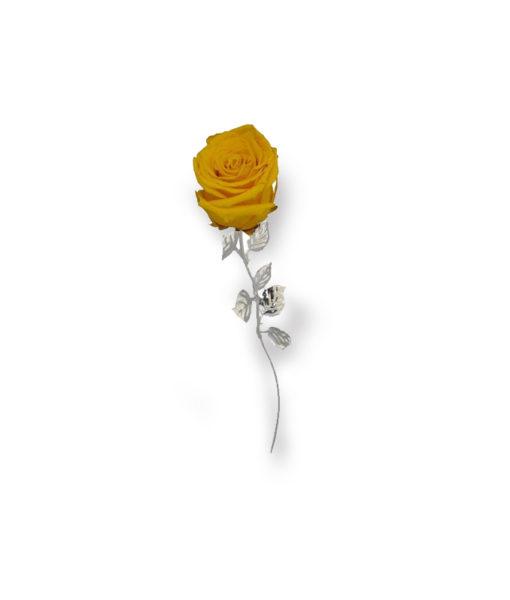 Rosa Naturale Stabilizzata Gialla 30 - NonSoloCerimonie.it