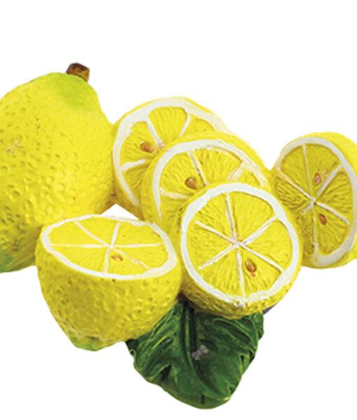 Magnete Limoni 1 - NonSoloCerimonie.it